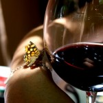 wino 150x150 Co nieco o winach